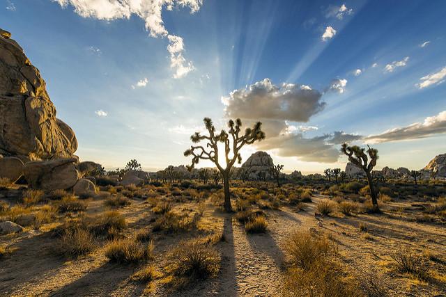photos of california